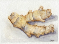 Ginger Original Still Life Watercolor Painting