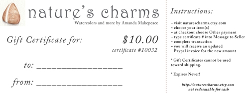 Gift Certificate to Nature's Charms for $10.00