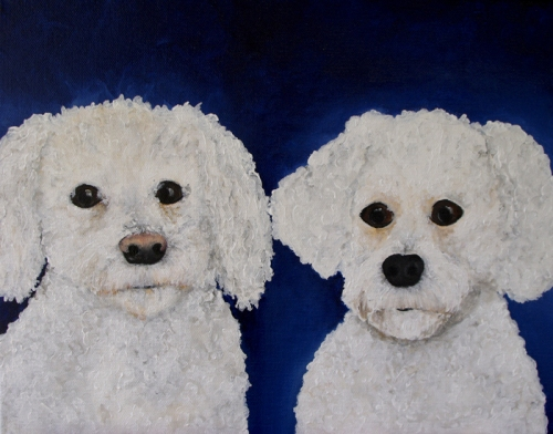 Bichons Frise Pet Portrait